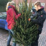 Tannenbaum-Aktion im Ortskern